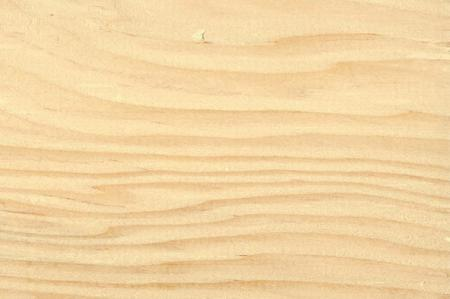 Пихта Дугласа (Pseudotsuga menziesii), дерево, свойства древесины