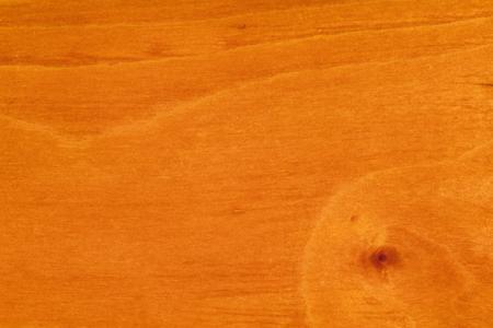 Бук, миртовый (Nothofagus cunninghamii), дерево, свойства древесины